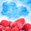 Frozen raspberries close up — 图库照片