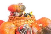 Turbante calabazas y calabazas ornamentales — Foto de Stock