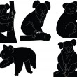 Koala silhouette collection - Stock Vector