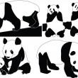 Royalty-Free Stock Obraz wektorowy: Panda collection