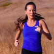 Female Runner — Stock Photo #2697600