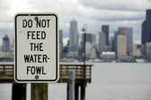 Do Not Feed the Waterfowl — Stock Photo