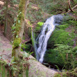 Coal Creek Falls - Stock Photo