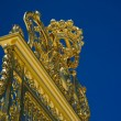 Detail of golden door of Versailles Palace. France — Stock Photo