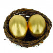 Golden egg in bird nest — Zdjęcie stockowe #3074539