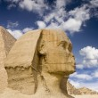 Egyptian Sphinx with pyramid — Stock Photo #2897503