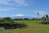 Kilimanjaro i kenya — Stockfoto