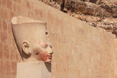 Stone pharaoh's head — Stockfoto