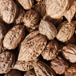 Closeup of walnuts - background — Stock Photo