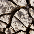 Cracks in dry earth — Stock Photo