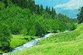 Arroyo de montaña — Foto de Stock