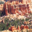 Bryce canyon — Stock Photo #3059079