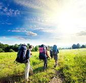 夏季徒步旅行 — 图库照片