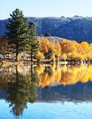 Podzim na jezeře — Stock fotografie