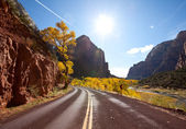 Autumn in the Zion — Stock Photo
