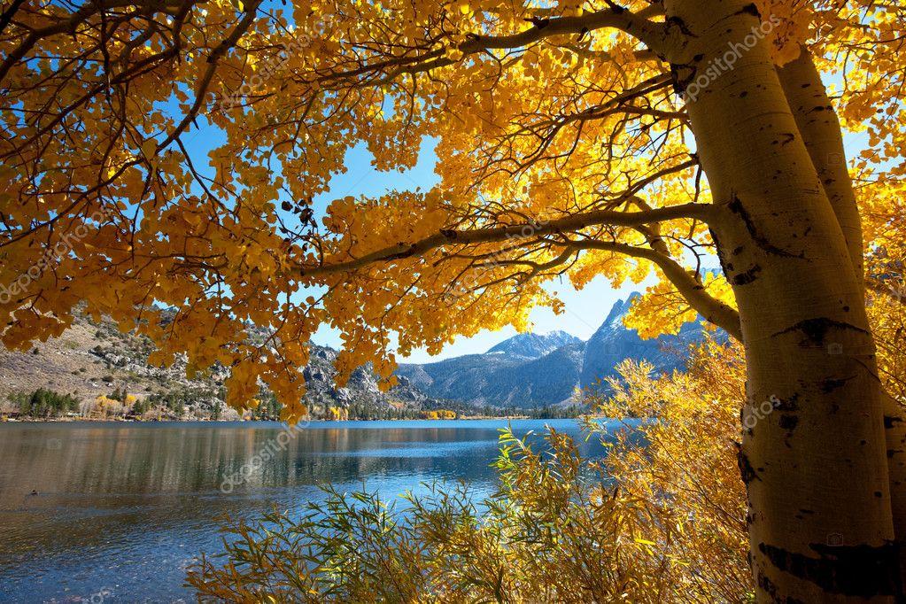 Autumn Lake Scenes Autumn Scene — Photo by