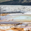 Stock Photo: Mammoth hot spring in USA