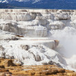 Mammoth hot spring — Stock Photo