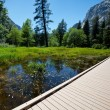 Stock Photo: Spring in Yosemite