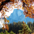 Autumn in Yosemite - Stock Photo