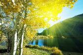 Herbstliche — Stockfoto
