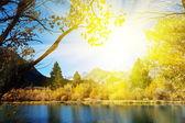 Autumn lake at dusk — Stock Photo
