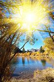 осеннее озеро — Стоковое фото