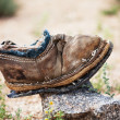 Royalty-Free Stock Photo: Old boot
