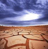 Drought — Stock fotografie