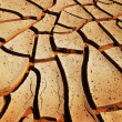 Drought land — Stock Photo #3751805