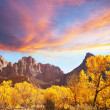 图库照片: Autumn in Zion
