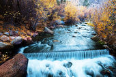 Autunno creek — Foto Stock