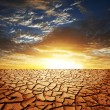 Stock Photo: Drought land