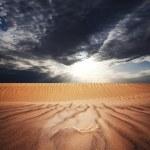 Desert — Stock Photo #3833783