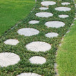The curving stepping stone path — Stock Photo