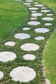 The curving stepping stone path in the garden meadow. — Stock Photo