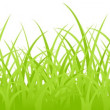 Stock Vector: Grass.