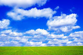 Green field and blue sky image. — Stock Photo