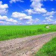 Green field with road and blue sky. — Zdjęcie stockowe