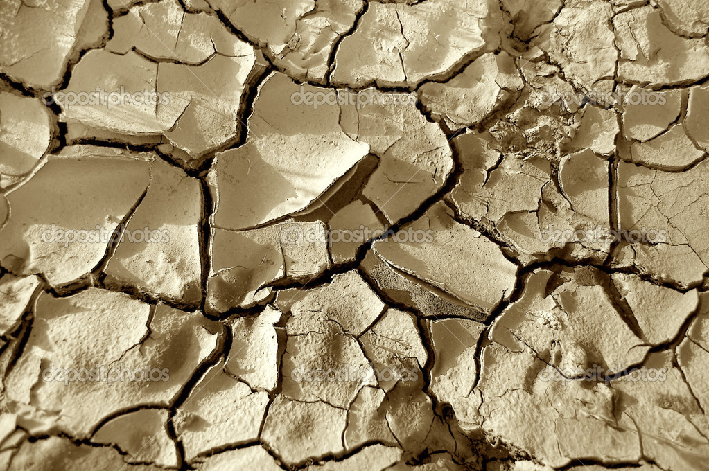 Texture conceptual image. Close up of dry land.  Stock Photo #3305525