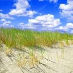 Dunes conceptual image. — Stock Photo