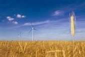 Windmill conceptual image. — Stock Photo