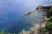 Zatoka delfinów — Zdjęcie stockowe