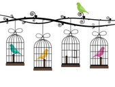 Bird cages — Stock Vector