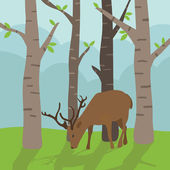Deer in forest — Stock Vector