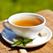 White tea cup lit by nice daylight — Stock Photo