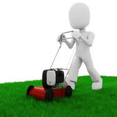 3d man cutting the grass with a push lawn mowe — Stock Photo