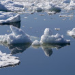 Stock Photo: Ice and reflections