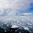 Ice fjord — Stock Photo