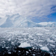 Ice fjord — Stock Photo #3798814
